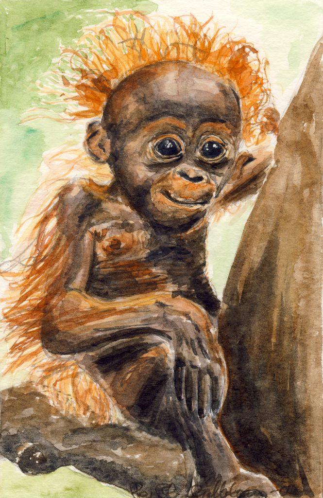Akvarell av orangutang