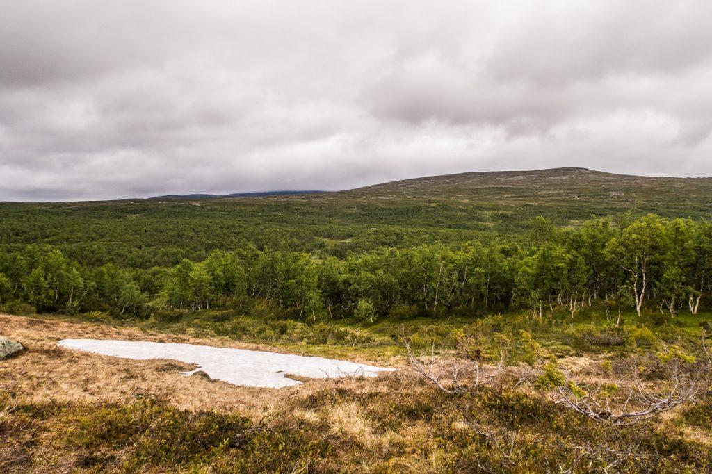 Utsikt mot Dunsjöfjället