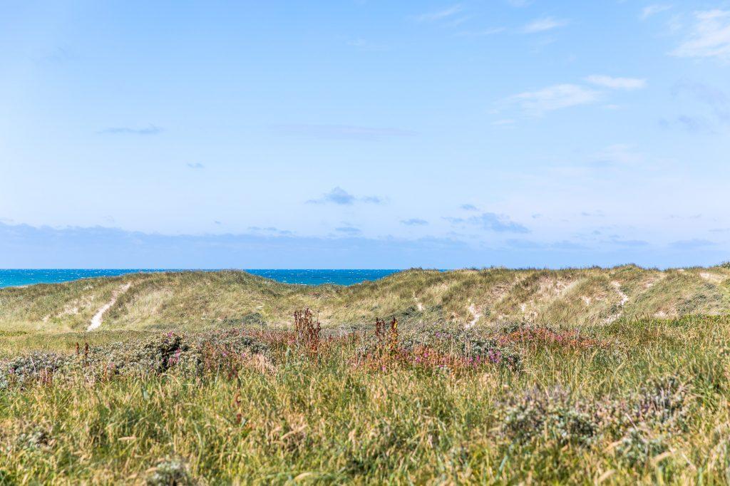 Utsikt mot havet