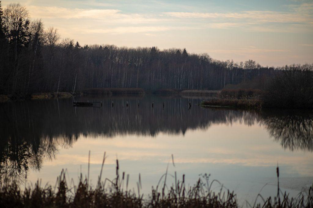 Stilla sjö med rester av gammal brygga