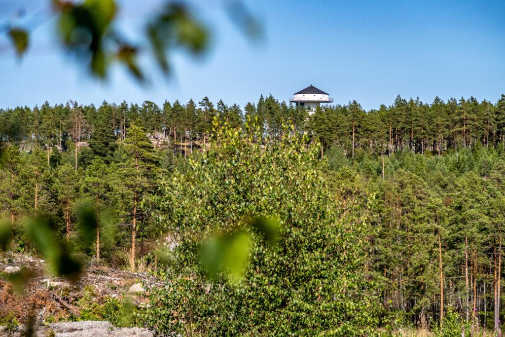 Vit byggnad vid skogsrand