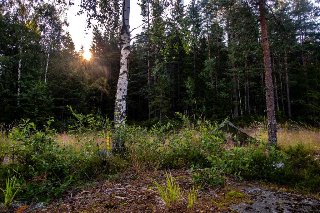 Soluppgång vid Mörktjärnen med tält längs Bergslagsleden