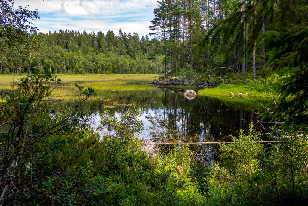 Sjön Tunntappen som passeras när man går längs Bergslagsleden