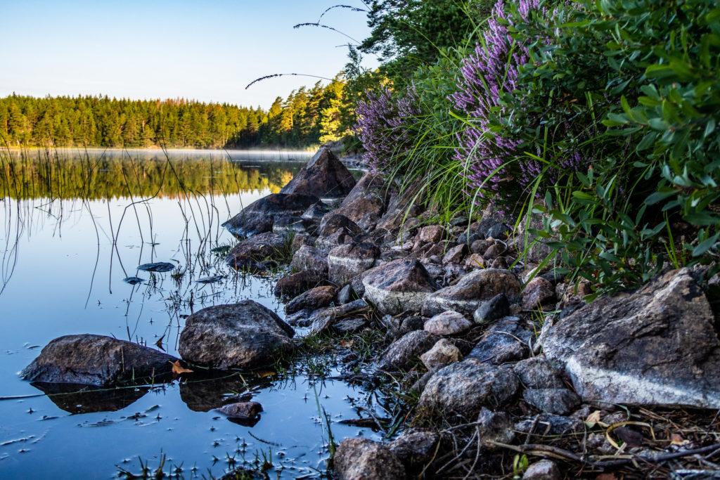 Lätt morgondimma över Lilla Älgsjön