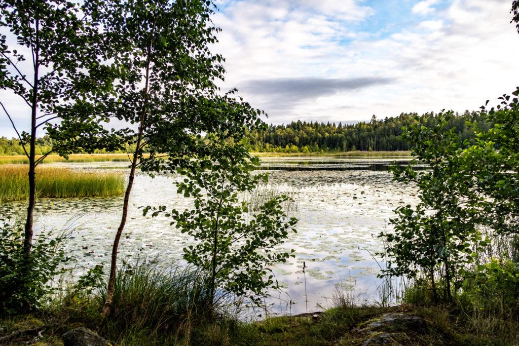 Utsikt från vindskydd vid sjön Trasken