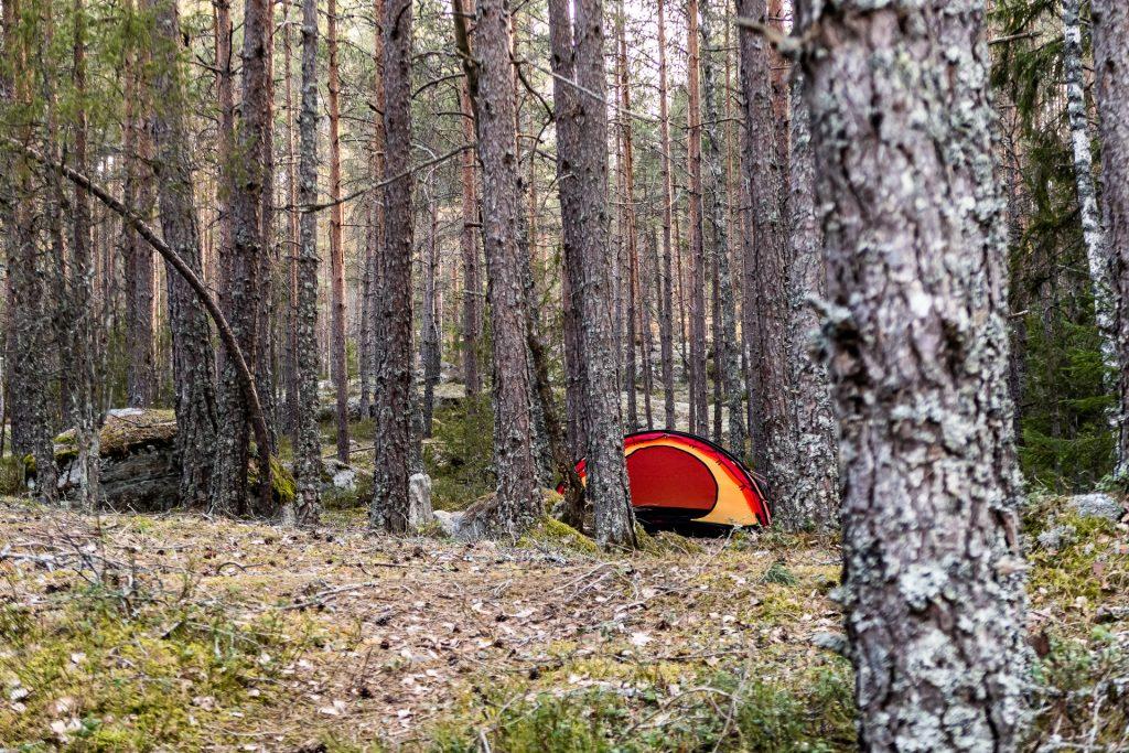 Hilleberg Niak i skogen