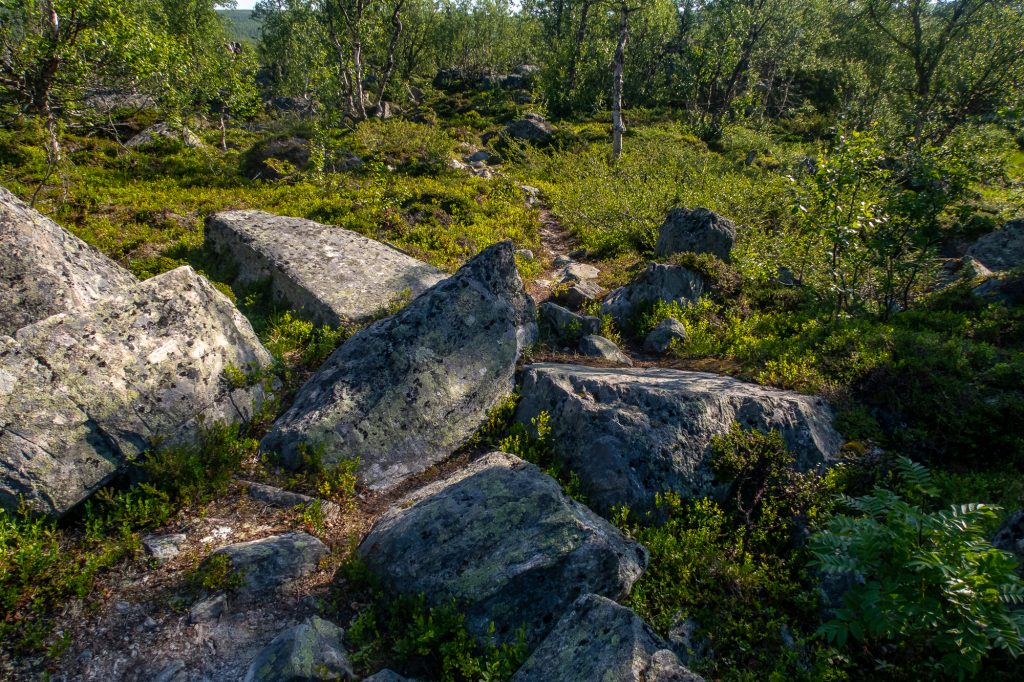 Stenig stig längs Kungsleden