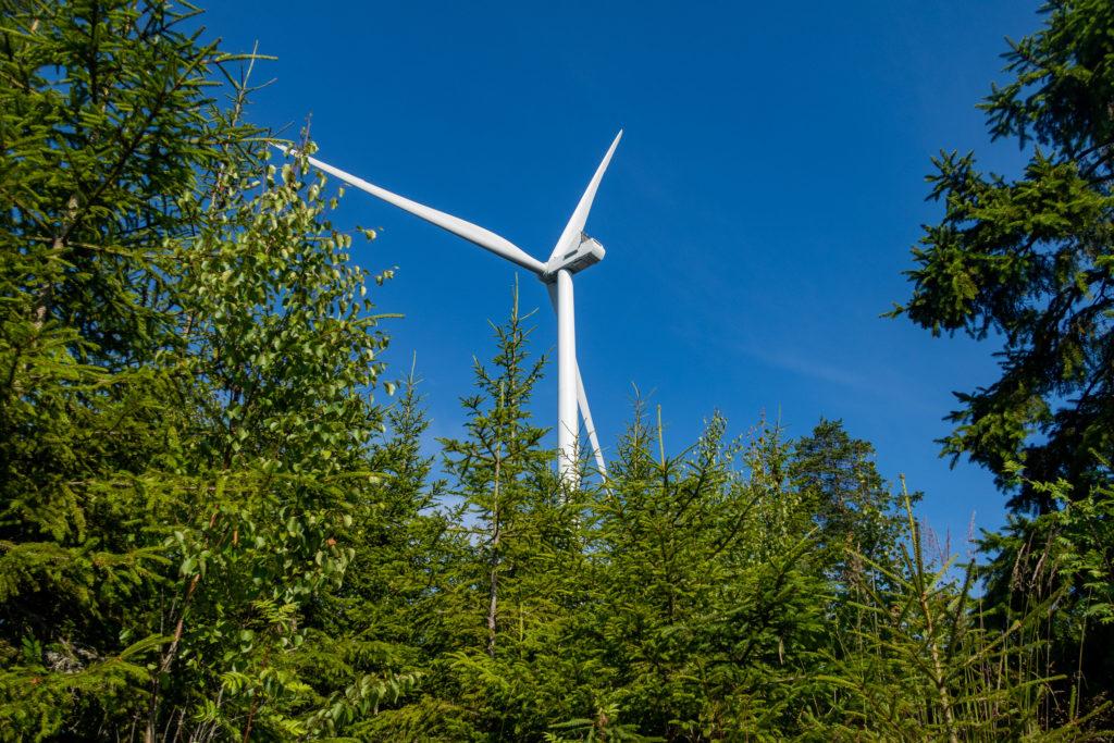 Baksidan av vindkraftverk i skog längs Bergslagsleden