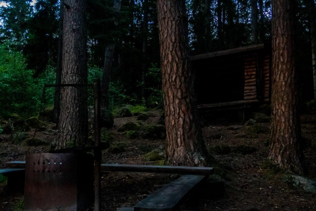 Vindskydd vid Bosjön i kvällsljus