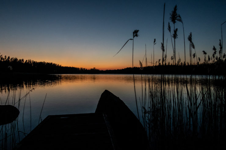 Solnedgång över sjö med brygga och vass