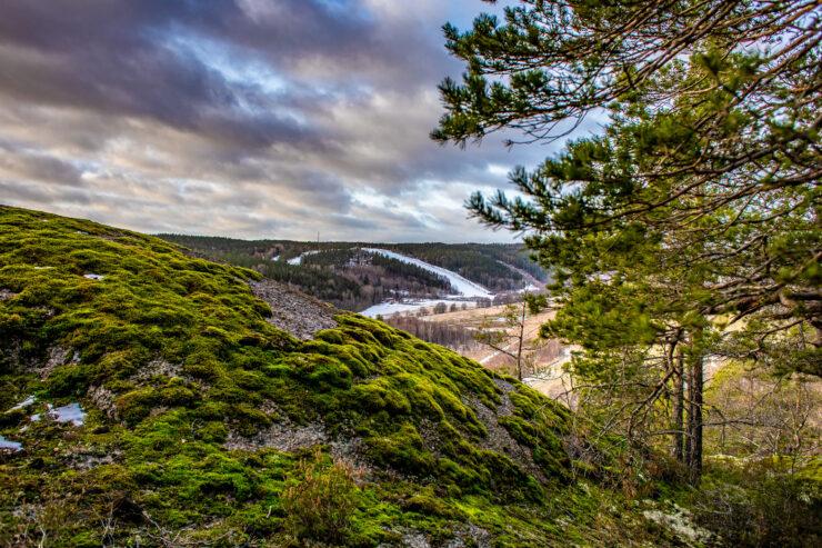 Utsikt från Dvardala