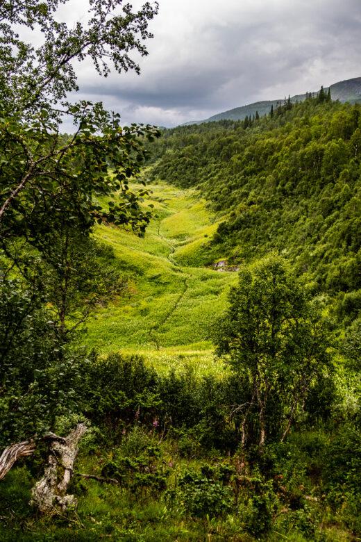 Utsikt över blinda dalen och Bjurälven