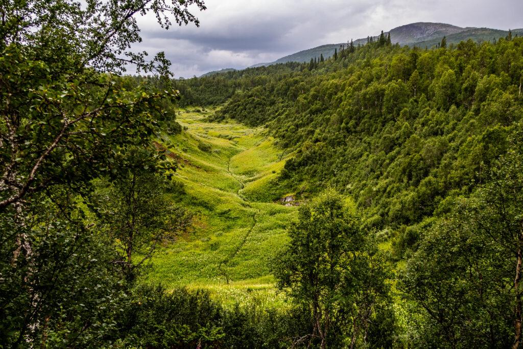 Blinda dalen i Bjurälvens naturreservat